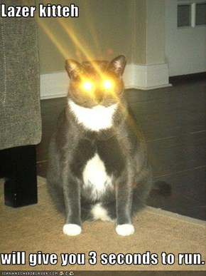 Lazer kitteh  will give you 3 seconds to run.
