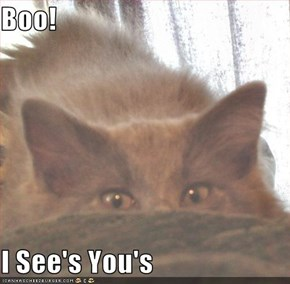 Boo!   I See's You's