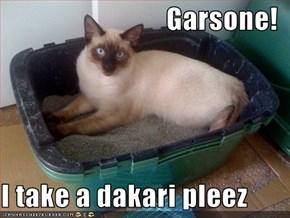 Garsone!  I take a dakari pleez