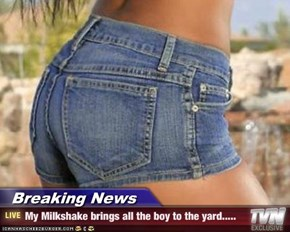Breaking News - My Milkshake brings all the boy to the yard.....