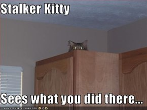 Stalker Kitty  Sees what you did there...