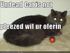 Undead Cat is not pleezed wif ur oferin