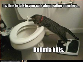 It's time to talk to your cats about eating disorders....