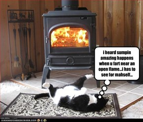 i heard sumpin amazing happens when u fart near an open flame...i has to see for mahself...