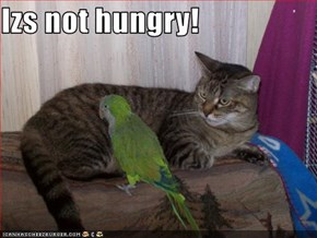 Izs not hungry!