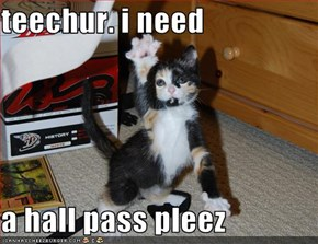 teechur. i need  a hall pass pleez