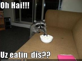 Oh Hai!!!  Uz eatin  dis??