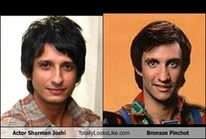 Actor Sharman Joshi Totally Looks Like Bronson Pinchot
