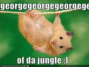 georgegeorgegeorgegeorgegeorgegeorgegeorge  of da jungle ;]