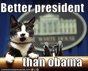 Better president  than obama