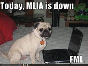 Today, MLIA is down  FML.