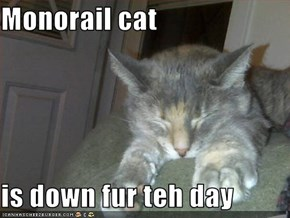 Monorail cat  is down fur teh day