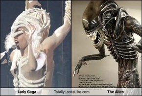 Lady Gaga Totally Looks Like The Alien