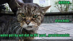 HRMPH... darn kidz... wdnt get by wif dat in MY yard...grmblmumblz