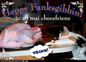 Ai'z gonna gib fanks wunce ai get dis in mai belly, aifinkso!
