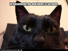 In basement, no one heerz u screem.
