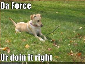 Da Force  Ur doin it right