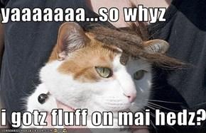 yaaaaaaa...so whyz  i gotz fluff on mai hedz?