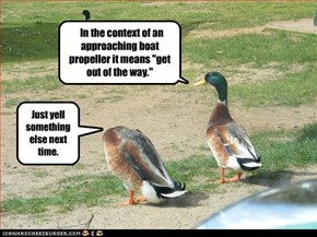 """In the context of an approaching boat propeller it means """"get out of the way."""""""