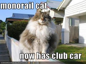 monorail cat  now has club car
