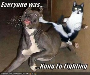 Everyone was...  ...Kung Fu Fighting