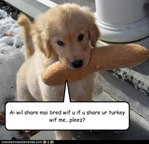 Ai wil share mai bred wif u if u share ur turkey wif me...pleez?