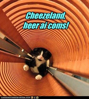 Cheezeland,  heer ai coms!