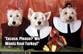 """Excuse, Please?  We Wants Real Turkey!"""