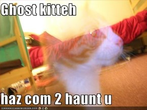 Ghost kitteh  haz com 2 haunt u