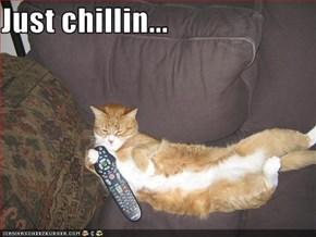 Just chillin...