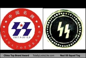China Top Brand Award Totally Looks Like Nazi SS Squad Tag