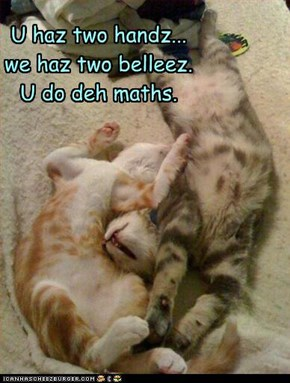 U haz two handz... we haz two belleez. U do deh maths.