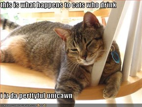 this is what happens to cats who drink  i iz da perttyful unicawn