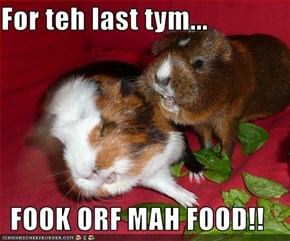 For teh last tym...  FOOK ORF MAH FOOD!!