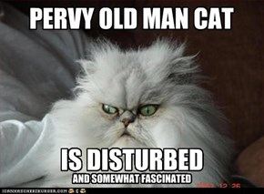 PERVY OLD MAN CAT