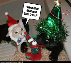 """What Kind Of Stupid Tree Iz Dis?"""