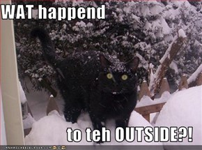 WAT happend  to teh OUTSIDE?!