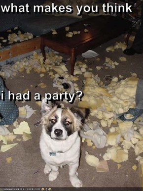 what makes you think i had a party?