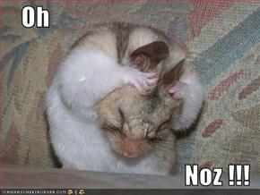 Oh  Noz !!!