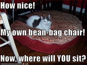 How nice!  My own bean-bag chair! Now, where will YOU sit?