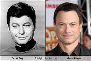 Dr. McCoy Totally Looks Like Gary Sinese