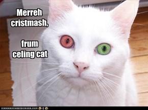 Merreh cristmash,  frum  celing cat