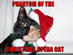 PHANTOM OF THE       CHRISTMAS OPERA CAT
