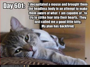 I decapitated a mouse and brought them the headless body in an attempt to make them aware of what  I  am capable of - to try to strike fear into their hearts.. They just called me a good little kitty.   My plan has backfired.