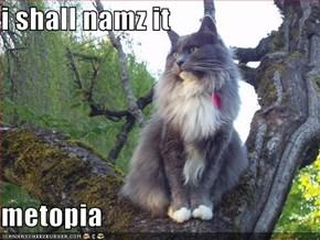 i shall namz it  metopia
