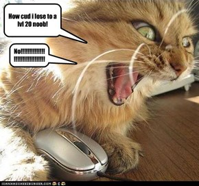 Wow cat rage