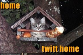 home  twitt home