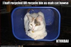 Kitteh Recyles