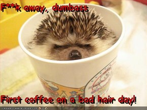 F**k away, dumbass  First coffee on a bad hair day!