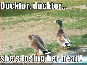 Ducktor, ducktor...  she's losing her head!